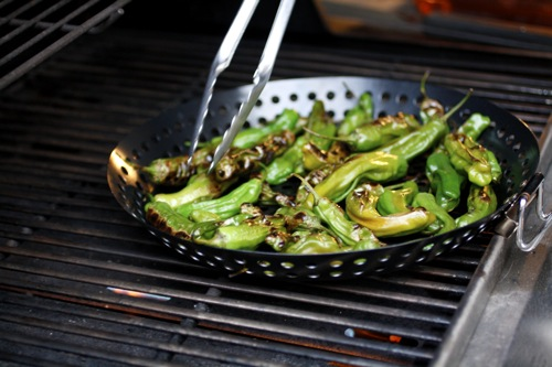 shishito, grilled shishito peppers