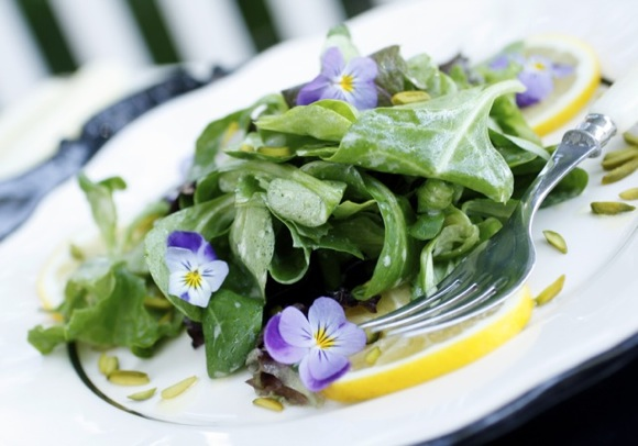 lemon salad violas