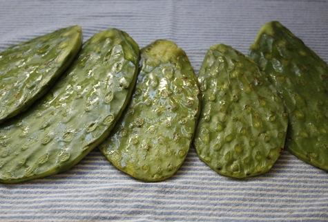nopalitos, cactus pads