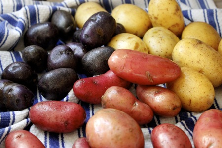 red, white & blue potatoes