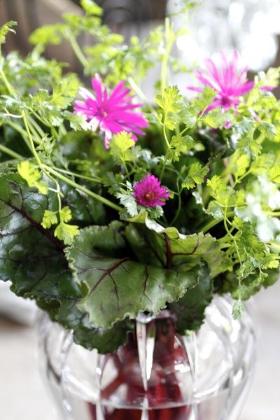 beet greens & chervil centerpiece
