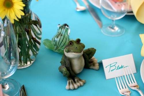 passover seder table frogs