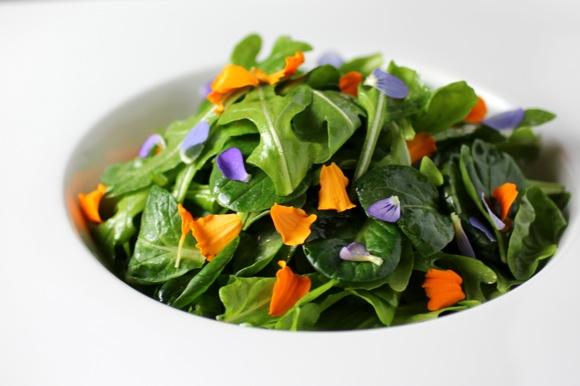 tatsoi salad, tat soi salad