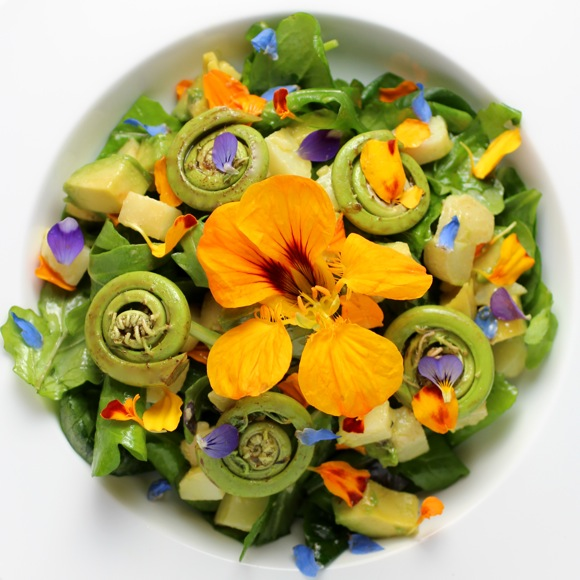 fiddlehead fern salad, edible flower salad
