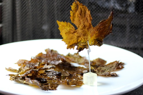 fried grape leaves, grape leaf chip