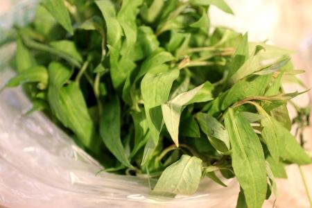 rau ram, vietnamese coriander