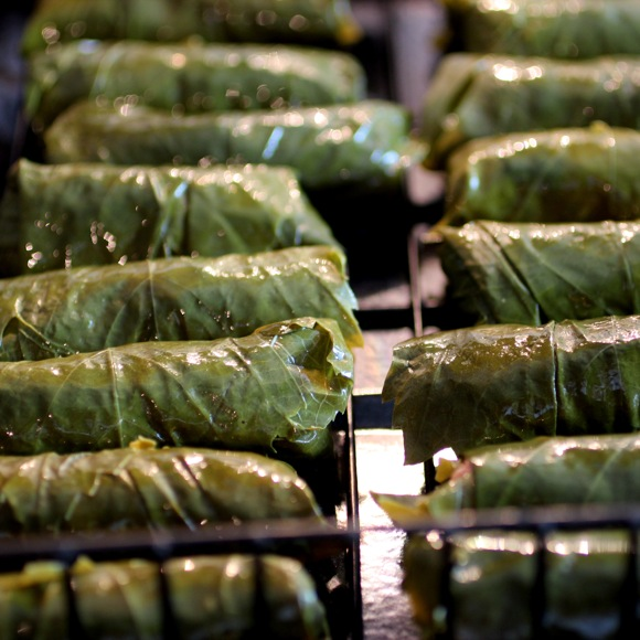 grilled dolmades