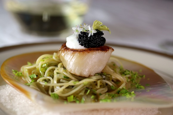 scallop, melted leek pasta, elegant first course, valentine's day appetizer
