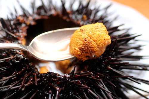 how to open clean fresh uni, sea urchin