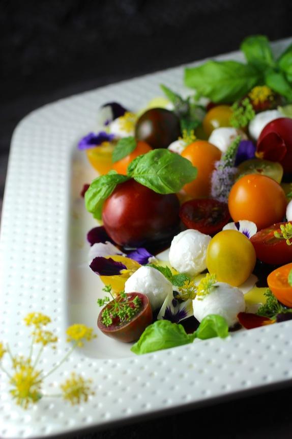 tomato & mozzarella, flowers, herbs