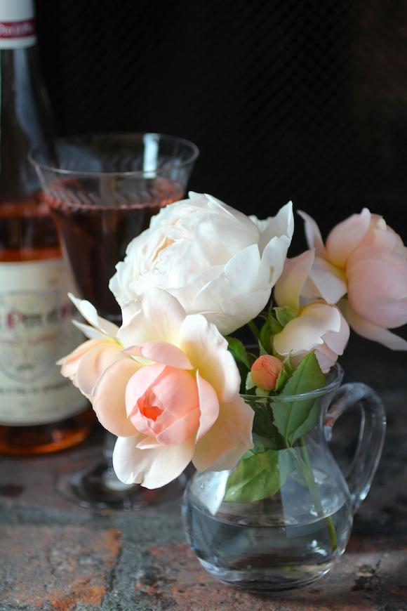david austin ambridge rose