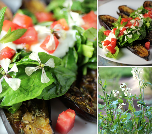 Thyme and Mint Roasted Eggplant with Arugula, Tomato, Yogurt Sauce