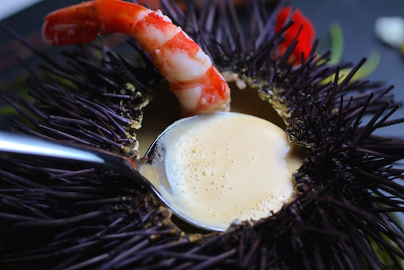 Sea Urchin Bisque