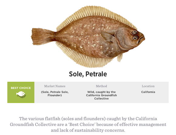 Petrale Sole Sustainability