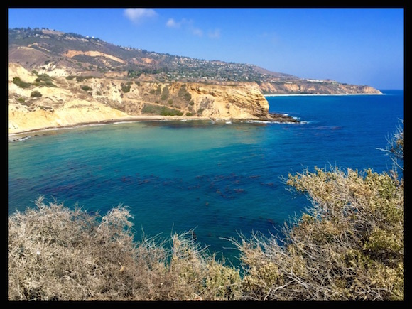 Palos Verdes Pastoral: A Garden-to-Table Dining Experience at Terranea Resort