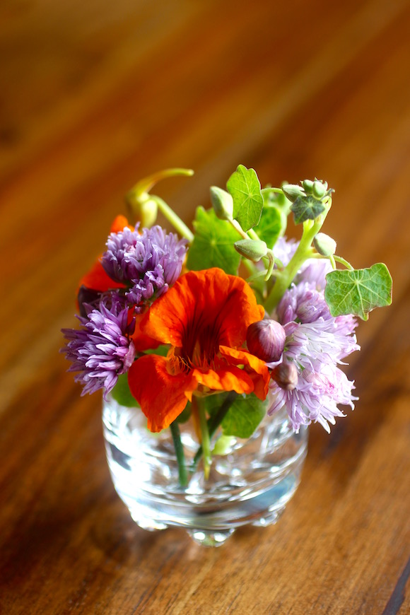 Edible Flowers: Chive and Nasturtium