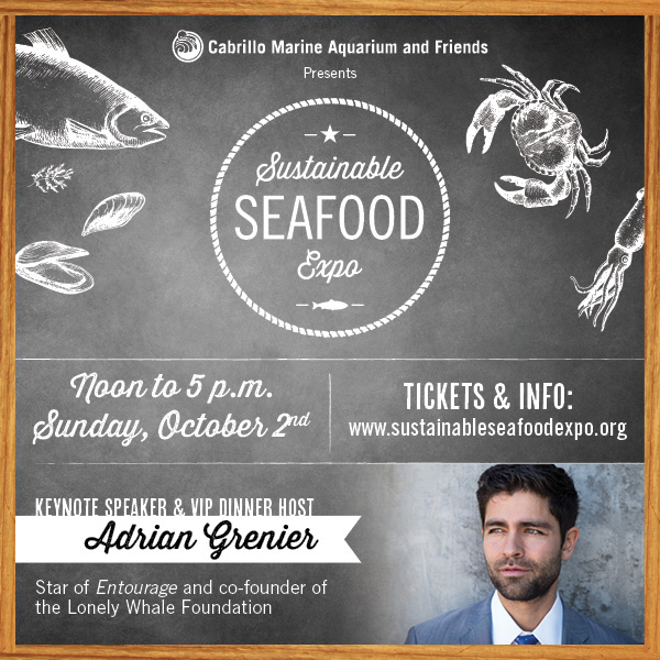 Sustainable Seafood Expo 2016