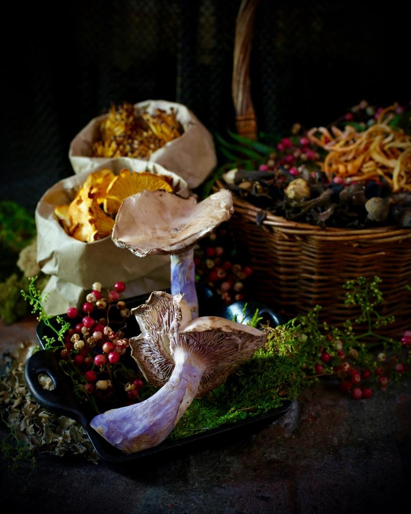 Wild Mushroom Still Life